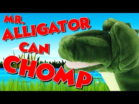Mr Alligator Can Chomp  Math Song for Kids  Less Than and Greater Than  Jack Hartmann