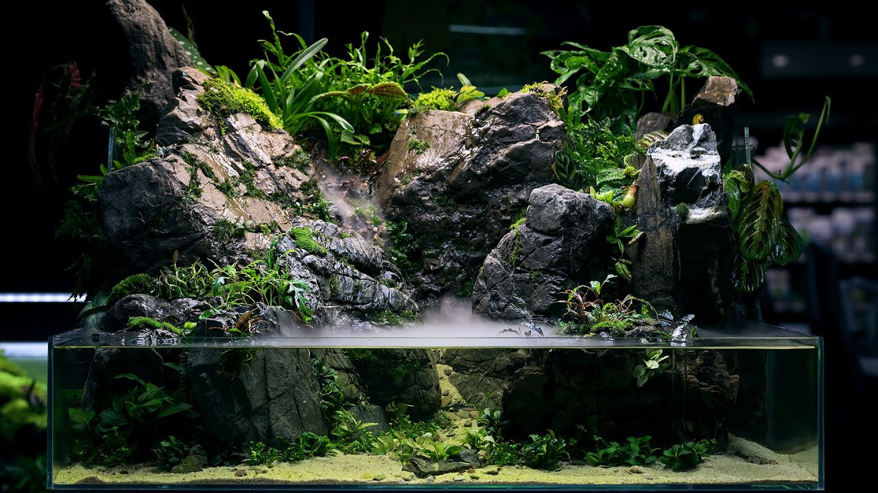 PALUDARIUM Rainforest Experience – REAL WATERFALL and Monumental Hardscape