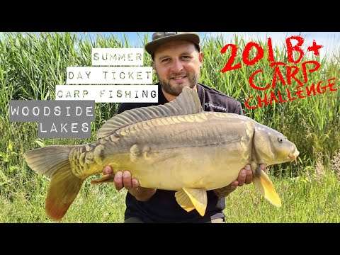 20lb+ Carp Challenge || Day Ticket Carp Fishing || Woodside Lakes || Martyns Angling Adventures