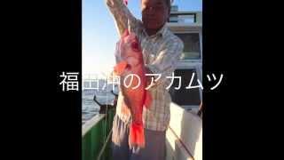 アカムツのメッカ:遠州灘@福田港・福徳丸/2015年8月5日 超高級魚の...