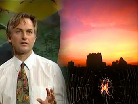 Ep2: Designed and Designoid Objects - Growing Up in the Universe - Richard Dawkins
