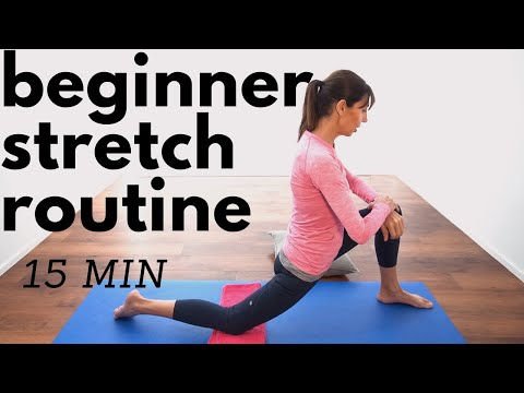Beginners Stretching Routine 15 Minutes Physio Guided Home Workout Youtube
