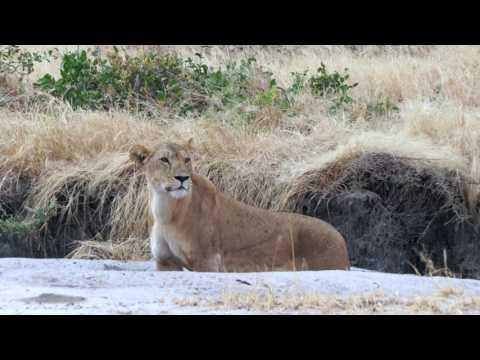 Roaming Around Tanzania & Zanzibar during Oasis Overland Safari