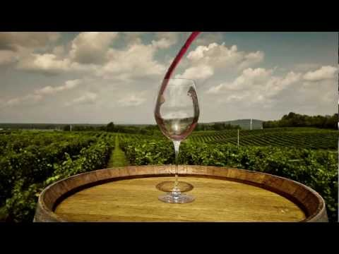 Virginia Wine and Dine Month - March