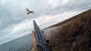 Охота #53 охота на утку, морская(В данном видео показаны действия происходящие на охоте, этот видео фильмы является исключительно научно-до..., 2016-01-14T07:00:00.000Z)