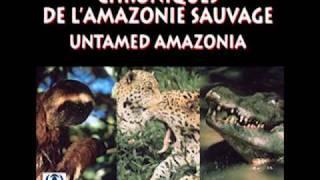 Untamed Amazonia