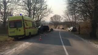 Полиция проводит проверку по факту ДТП, в котором пострадал мотоциклист