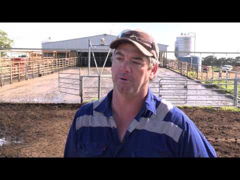 Improved Effluent Management on Dairy Farms, Western Australian Case Studies
