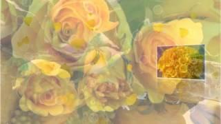 Жёлтые розы!