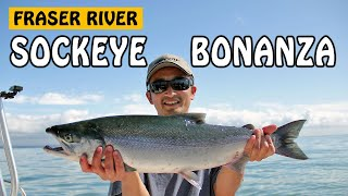 Fishing with Rod: Sockeye Salmon Bonanza