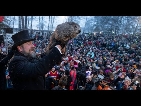 Snow Won't Delay Groundhog Day, Which Is Already Virtual This Year