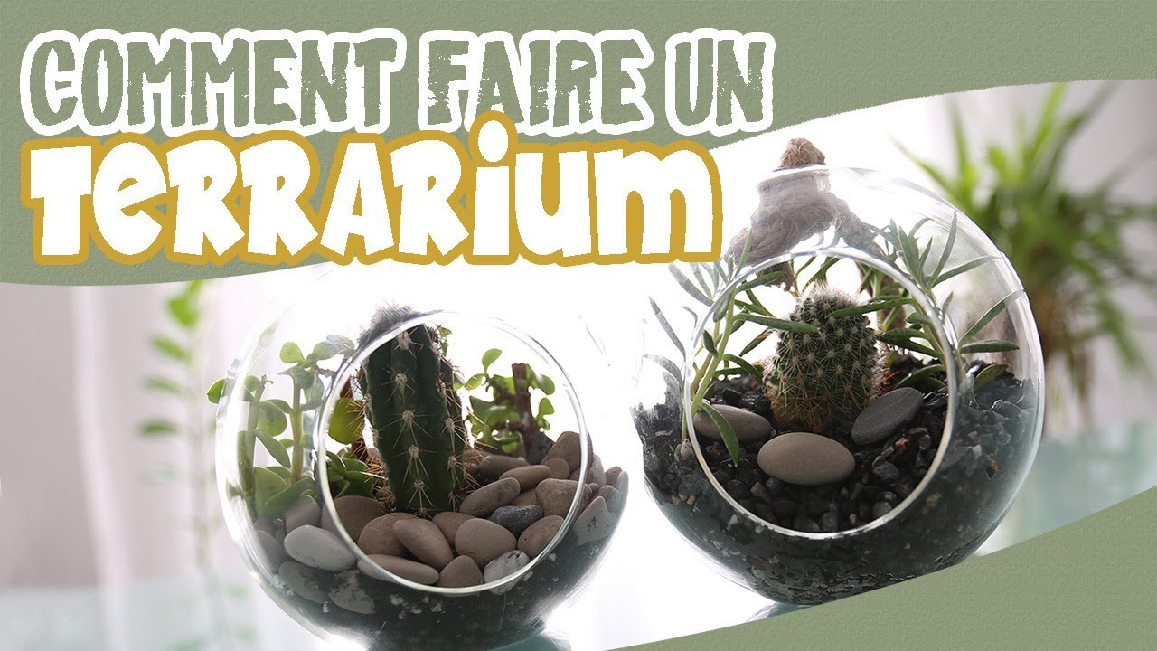 terrarium diy comment faire un terrarium youtube. Black Bedroom Furniture Sets. Home Design Ideas