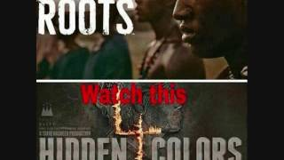 Tariq Nasheed: Hidden Colors vs. Roots