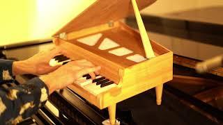 """Beethoven Piano Sonata """"Appassionata"""" on Toy Piano видео"""