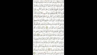 Tafseer Surah AL Amraan  (154-157) Mahasin Hamoud / AL Khateeb