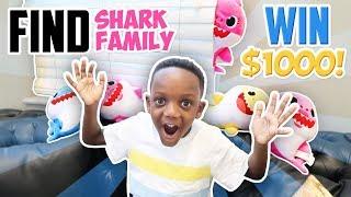 Baby Shark Hide N Seek Winner WINS $$$