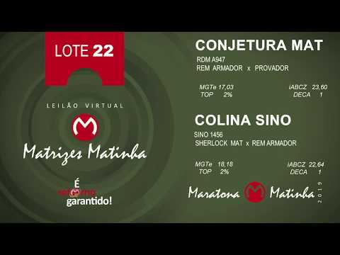 LOTE 22 Matrizes Matinha 2019