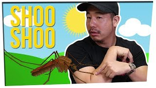 animal-rights-activist-wants-us-to-let-mosquitoes-drink-our-blood-ft-leenda-dong