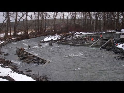 Taneum Creek's New Diversion Improves Fish Passage And Water Delivery