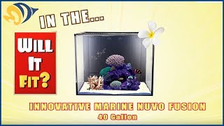 Will It Fit? - Innovative Marine NUVO Fusion Mini 40 Gallon Aquarium