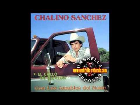 El Gallo de Sinaloa-Chalino Sanchez