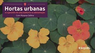 Hortas urbanas e a garantia de uma melhoria na alimentação
