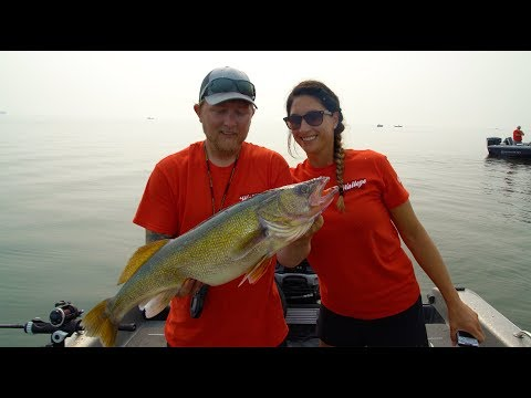 Walleye Shootout Tournament / HUGE WALLEYE Lake Of The Woods