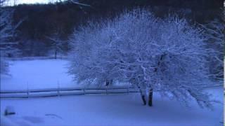 The Silence of Snow - Linda Eder