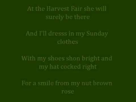 STAR OF THE COUNTY DOWN (with lyrics)