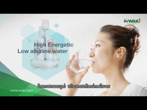 WAKi Bio Energy Cambodia