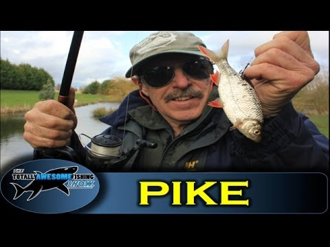 Pike fishing tips - Live Baiting by TAFishing Show