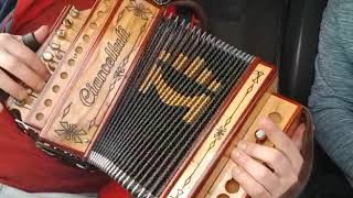 Saltarella-organetto-abruzzo