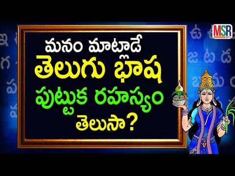 History of the telugu Language |  తెలుగు భాష  పుట్టుక రహస్యం తెలుసా? | MSR TV