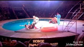 Город Тверь новое цирковой шоу на воде начало