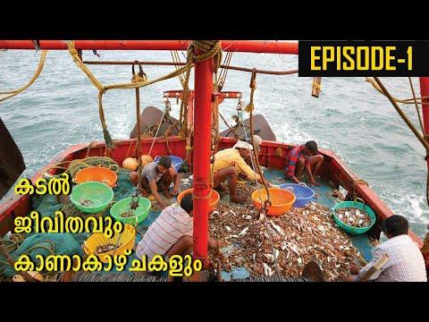 പച്ചയായ കടൽ  ജീവിതം കണ്ടിടുണ്ടോ? kadal jevithavum kana kazchayum ep# 1 \fishing in sea india