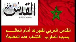 القدس العربي تفجرها أمام العالــــــم بسبب المغرب اكتشف هذه المفاجأة