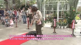 ポートアイランドにある「神戸花鳥園」が「神戸どうぶつ王国」としてリ...