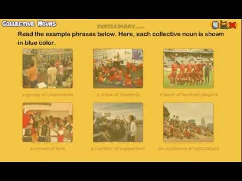 Collective Nouns - Grammar Lesson for Grade 3
