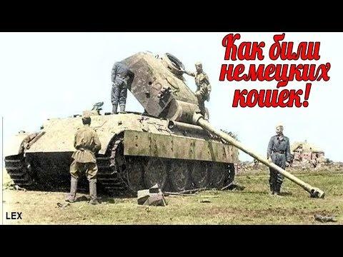 """Куда били немецкую """"кошку""""? Под Курском из 200 """"Пантер"""" за 3 дня осталось 20 машин. военные истории"""