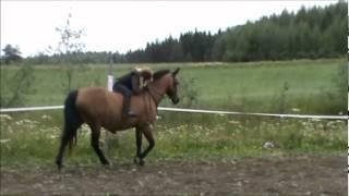 Kun ratsastan äitin opetuksella... [ÄITIN ÄÄNI TEHOSTEET]