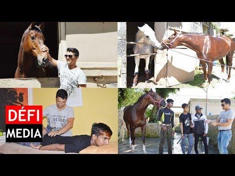 Ravi Rawa : le fabuleux destin d'un ancien jockey devenu soigneur de chevaux
