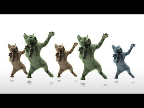 Dancing Cats - Sax Man by Pop-Gun