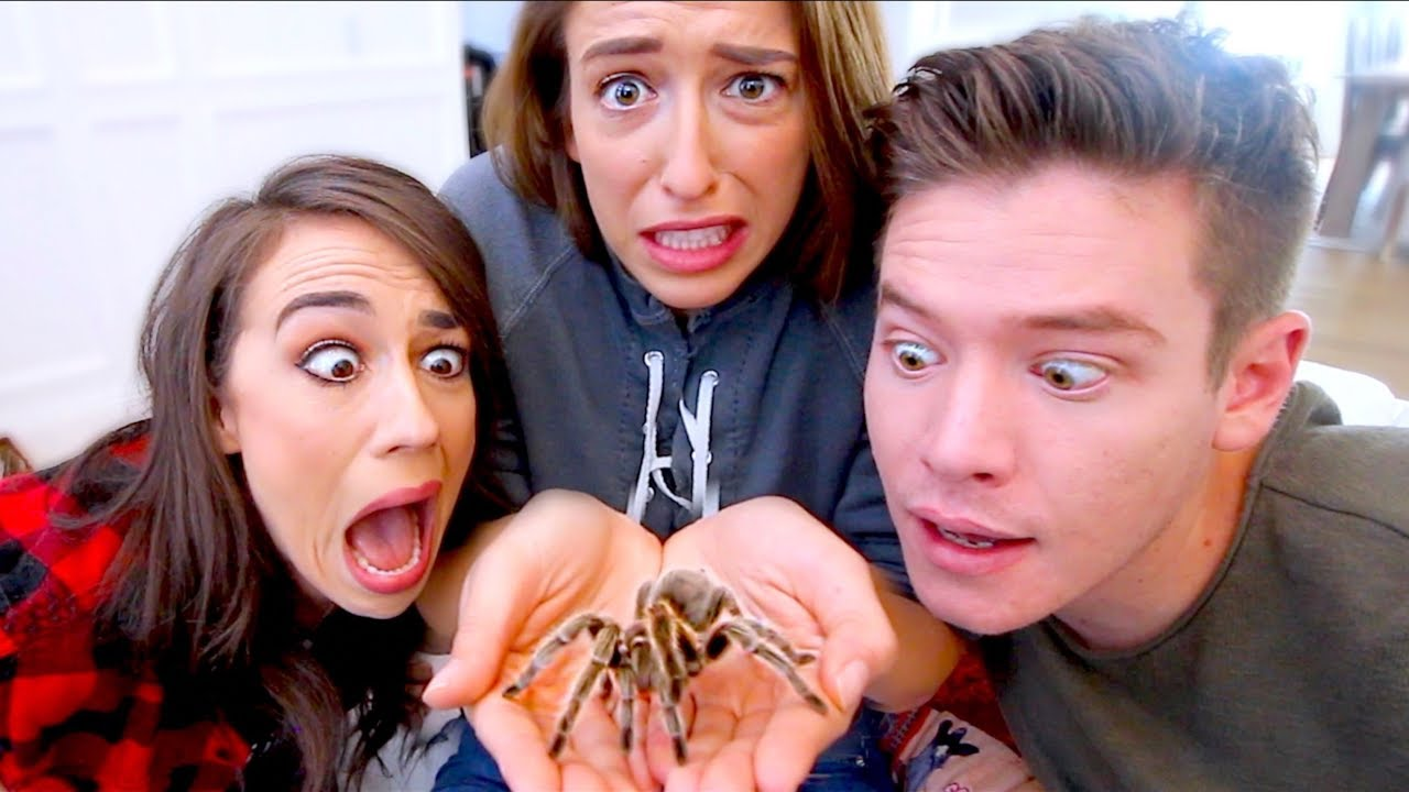 facing-our-biggest-fears-spiders-and-snakes