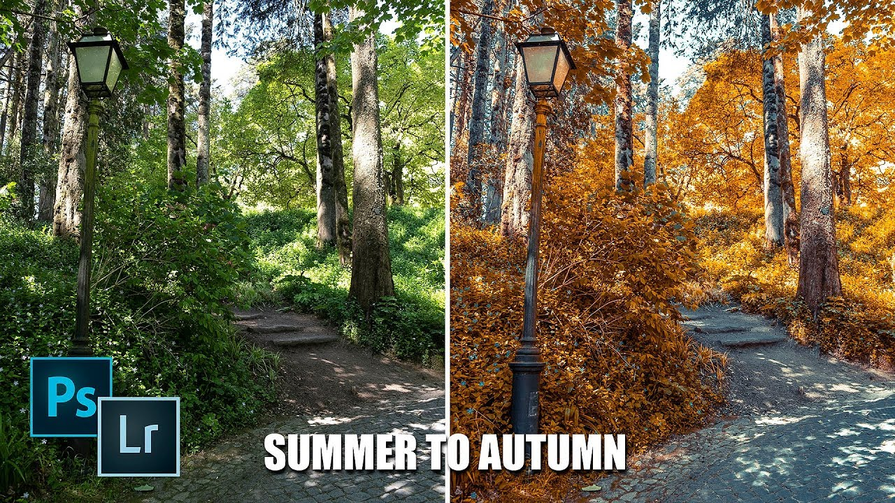 [VIDEO] - Transform Summer to Autumn in Lightroom or Photoshop ?? 1