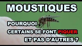 Moustiques : pourquoi certains se font piquer et pas d'autres ?