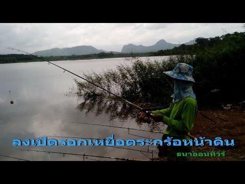 ตกปลาชะโดและตกปลามีเกล็ดด้วยเหยื่อตระกร้อผิวดินที่อ่างนาอีเลิศ Fishing CHADO