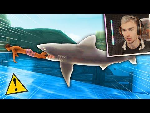 câți bani să câștigi în rechinul hangri