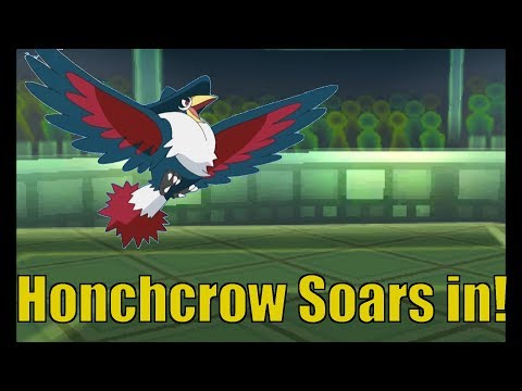 Narrated Battle   Honchcrow soars in!
