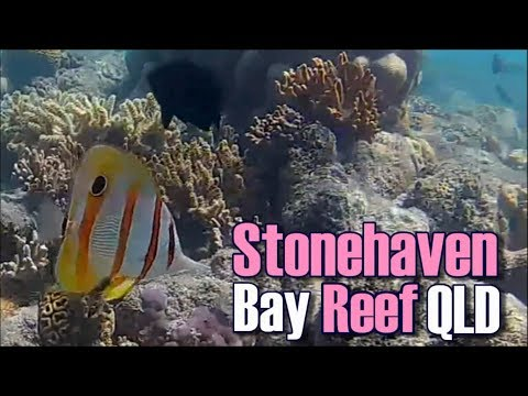 Stonehaven Bay on the Great Barrier Reef