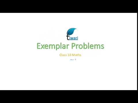 NCERT Exemplar for Class 10 Maths Chapter 3 Exercise 3 2